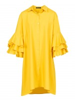 Limon amarillo